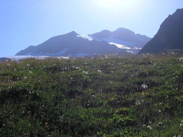 Foto: Andreas Koller / Wander Tour / Vom Simplonpass auf das Wasenhorn (3246 m) / 10.09.2009 00:00:52