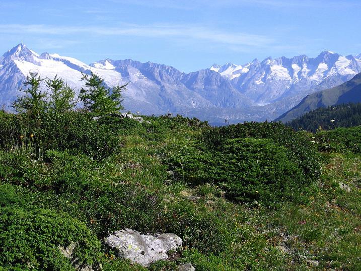 Foto: Andreas Koller / Wander Tour / Vom Simplonpass auf das Wasenhorn (3246 m) / 09.09.2009 23:59:52