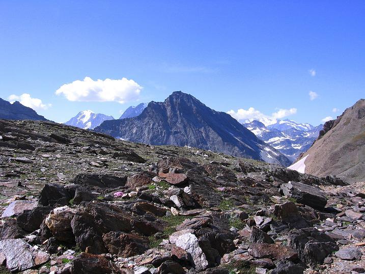 Foto: Andreas Koller / Wander Tour / Vom Simplonpass auf das Wasenhorn (3246 m) / 09.09.2009 23:55:35