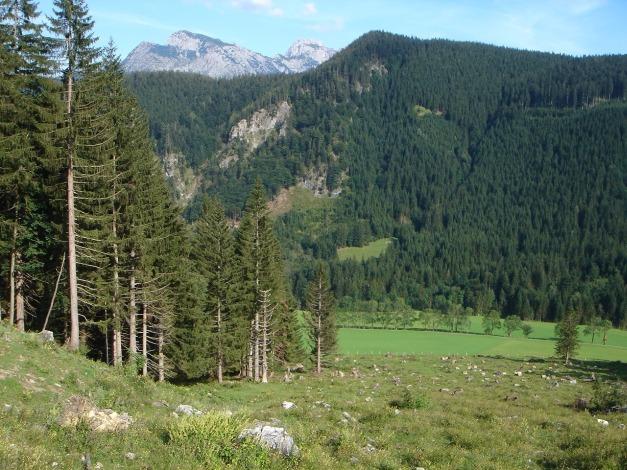 Foto: Manfred Karl / Wander Tour / Von Quehenberg auf den Schober / 31.08.2009 21:14:52