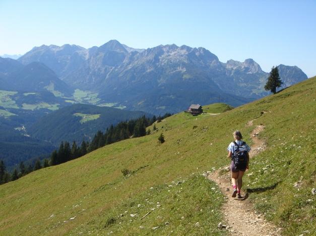Foto: Manfred Karl / Wander Tour / Über die Mahdalm aufs Kampl / 28.07.2017 21:28:18