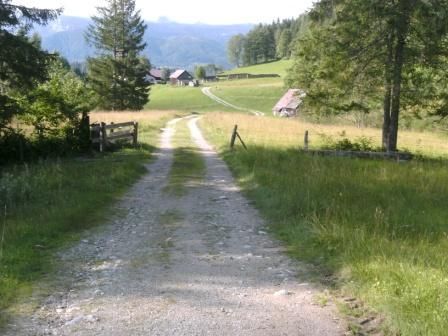 Foto: Johann P. / Mountainbike Tour / Oberwenger Panoramarunde mit Gostiztal / Die letzten Meter des Goslitztales. In Sichtweite der Bauernhof Goslitz. / 02.09.2009 19:34:46