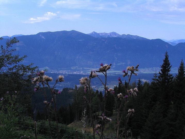 Foto: Andreas Koller / Wander Tour / Gamsbrünndlweg auf das Tschiernock (2088 m) / 03.09.2009 22:08:02