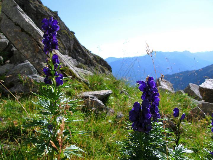 Foto: Andreas Koller / Klettersteig Tour / Bella Vista Klettersteig auf die Hohe Leier (2774 m) / 06.09.2009 23:10:31