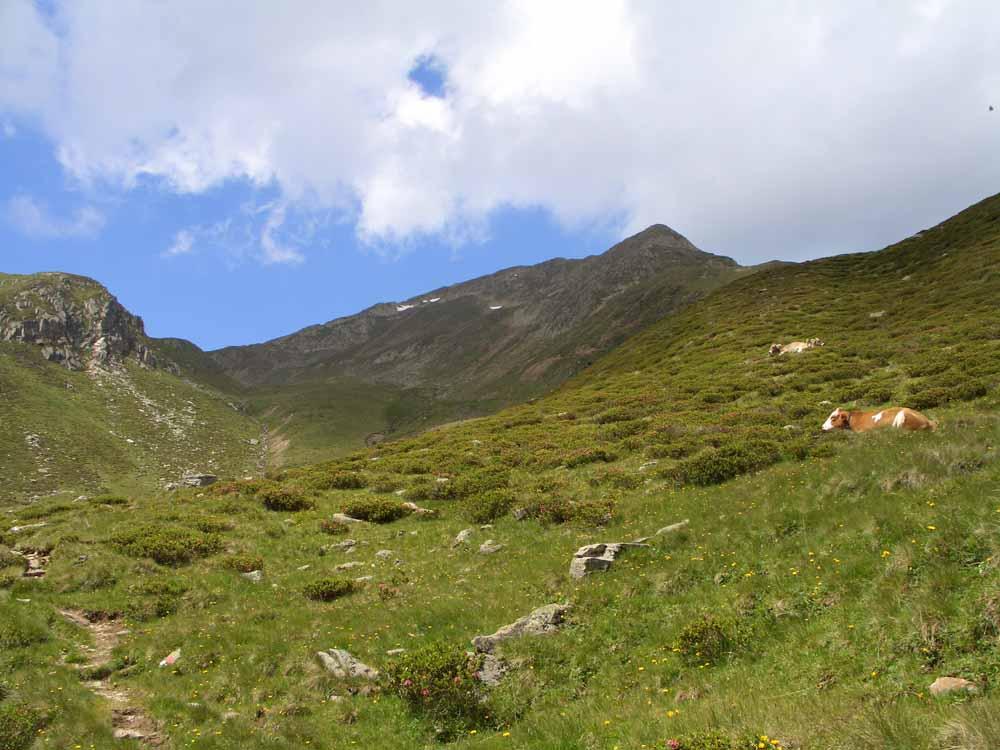 Foto: vince 51 / Wander Tour / Kreuzjochkogel-Überschreitung / 07.09.2009 22:48:11