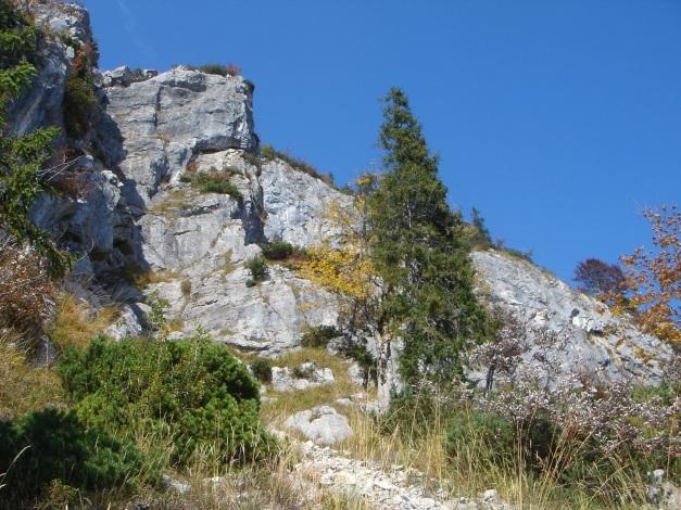 Foto: Manfred Karl / Wander Tour / Goldtropf Steig am Hochstaufen / In den Platten oberhalb wurde ein schöner Klettergarten eingerichtet, etwa 45 Min. Zustieg / 17.09.2009 21:17:27
