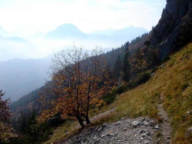 Foto: Manfred Karl / Wander Tour / Goldtropf Steig am Hochstaufen / 17.09.2009 21:16:12