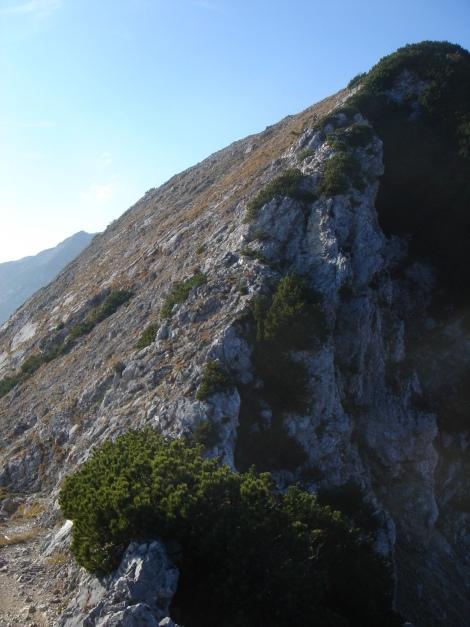 Foto: Manfred Karl / Wander Tour / Goldtropf Steig am Hochstaufen / Mittelstaufen, über kurze Felsstufen schnell erreichbar / 17.09.2009 21:05:24