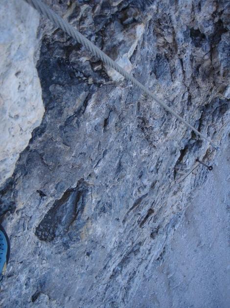 Foto: Manfred Karl / Klettersteig Tour / Tomaselli Klettersteig (Via ferrata Cesco Tomaselli) / Sehr steil gehts zur Sache im untersten Teil / 17.09.2009 22:20:33