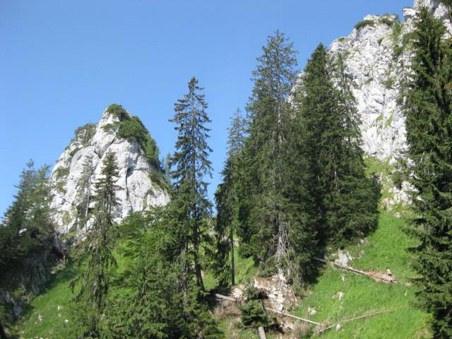 Foto: Wolfgang Lauschensky / Wander Tour / Kleiner Sparber 1488m / Kleiner und Großer Sparber - Anstieg in die Scharte / 05.11.2010 15:17:13