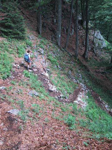 Foto: Wolfgang Lauschensky / Wander Tour / Kleiner Sparber 1488m / Normalweg aus der Sparberscharte hinab / 05.11.2010 15:16:01