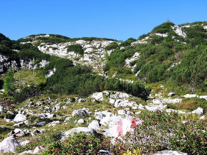 Foto: Andreas Koller / Klettersteig Tour / Via Steinbock am Schöberl (2426m) / Am Weg zur Simonyhütte / 26.09.2009 00:29:41