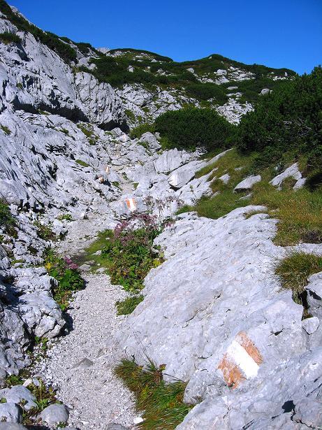 Foto: Andreas Koller / Klettersteig Tour / Via Steinbock am Schöberl (2426m) / Gut markierter Steig / 26.09.2009 00:25:18