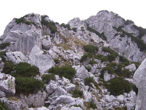 Foto: hofchri / Wander Tour / Hoher Göll (2522 m) - Runde Mannlsteig (B/C) und Schustersteig (A/B) / Blick hinauf zum Kehlstein - hier kommt man vom Kehlstein herüber / 01.10.2009 20:43:14