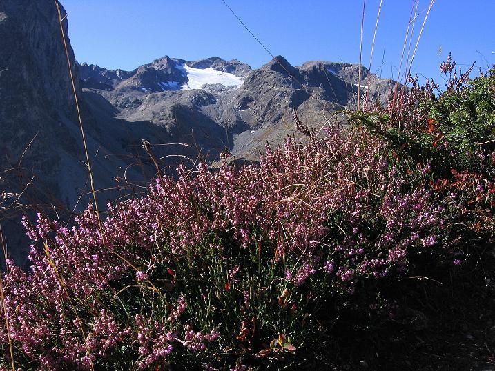 Foto: Andreas Koller / Wander Tour / Hoch über St. Moritz auf den Piz Julier (3380 m) / Piz Lagrev (3165 m) / 07.10.2009 20:39:05