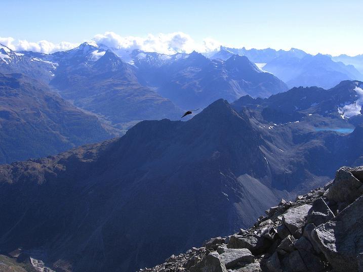Foto: Andreas Koller / Wander Tour / Hoch über St. Moritz auf den Piz Julier (3380 m) / 07.10.2009 20:15:51