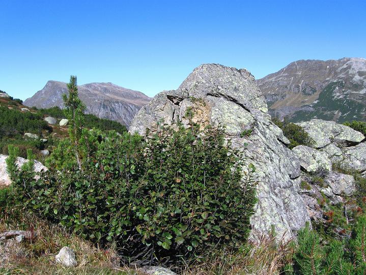 Foto: Andreas Koller / Klettersteig Tour / Klettersteig Silvapark (2671 m) / 10.10.2009 14:43:11
