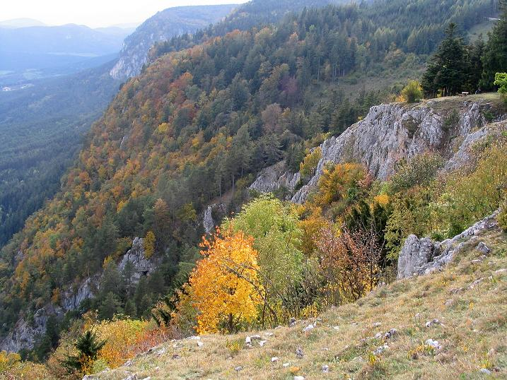 Foto: Andreas Koller / Klettersteig Tour / Frauenluckensteig und Völlerinsteig (892m) / 10.10.2009 00:44:13