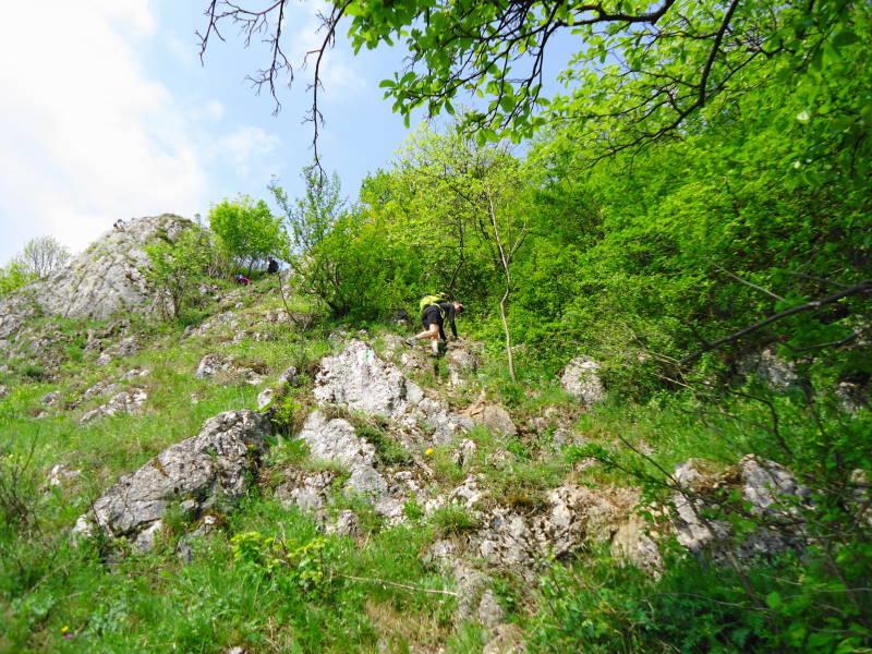 Foto: Günter Siegl / Klettersteig Tour / Ganghofersteig (826m) / Abstieg über Zischkasteig / 03.05.2014 21:07:45