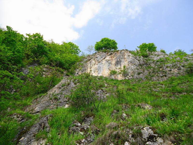 Foto: Günter Siegl / Klettersteig Tour / Ganghofersteig (826m) / Die Wand! / 03.05.2014 21:07:18