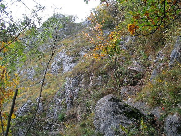Foto: Andreas Koller / Klettersteig Tour / Ganghofersteig (826m) / Abstieg = Zustieg zum Ganghofersteig / 09.10.2009 00:58:23