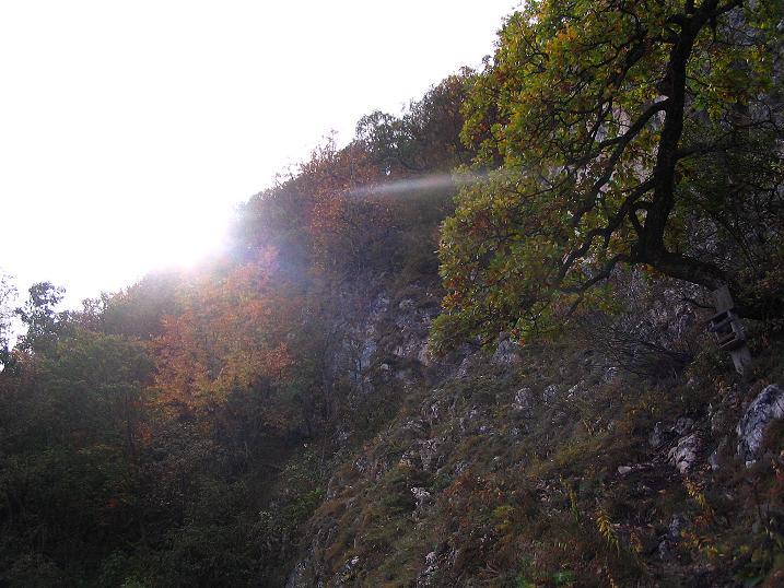 Foto: Andreas Koller / Klettersteig Tour / Ganghofersteig (826m) / 09.10.2009 00:57:34