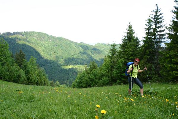 Foto: Christian Schickmayr / Wander Tour / Hochfelln über Weißachental / Abstieg nach Kohlstatt über steile Grashänge / 09.10.2009 09:35:05