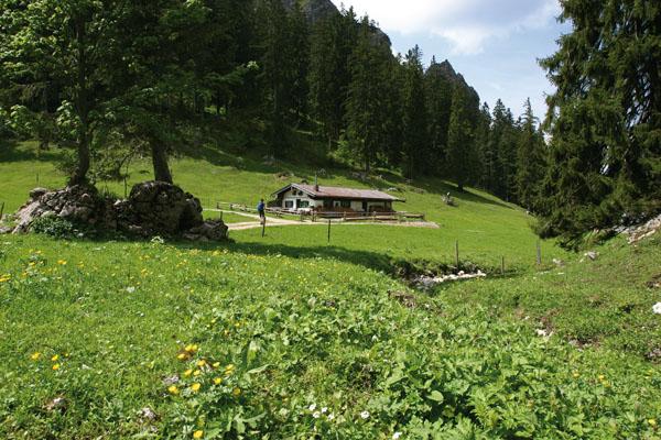 Foto: Christian Schickmayr / Wander Tour / Hochfelln über Weißachental / Lohnender Abstecher beim Auf- oder Abstieg: die romantische Hinteralm unter dem Hochgern / 09.10.2009 09:32:07