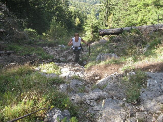 Foto: Wolfgang Lauschensky / Wander Tour / Schwarzerberg-Runde von Unterscheffau / schrofiger Mittelteil am Westhang / 09.10.2009 18:33:10