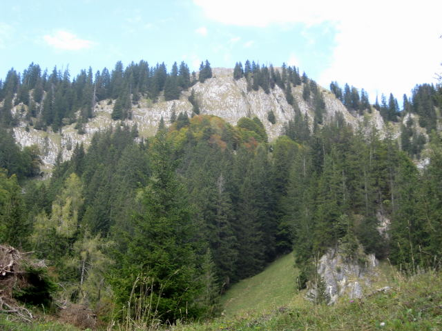 Foto: Wolfgang Lauschensky / Wander Tour / Schwarzerberg-Runde von Unterscheffau / Südflanke des Schwarzerberges / 09.10.2009 18:31:54