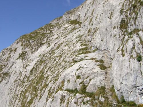 Foto: hofchri / Wandertour / Schafberg (1782 m) - Runde Purtscheller (B) - und Himmelspfortensteig (A) / der steile Steig / 10.10.2009 20:15:57