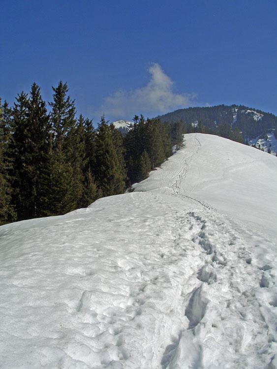 Foto: vince 51 / Schneeschuh Tour / Hohe Kugel / Im Aufstieg, zwischen den Bäumen links der Gipfel / 12.10.2009 23:17:28