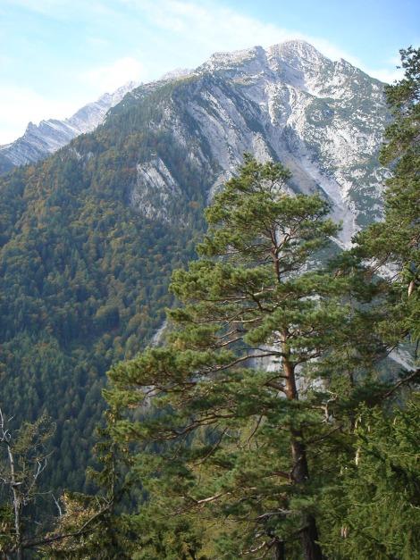 Foto: Manfred Karl / Klettersteig Tour / Klettersteig Burgstall / Grimming vom Burgstall / 13.10.2009 21:47:09