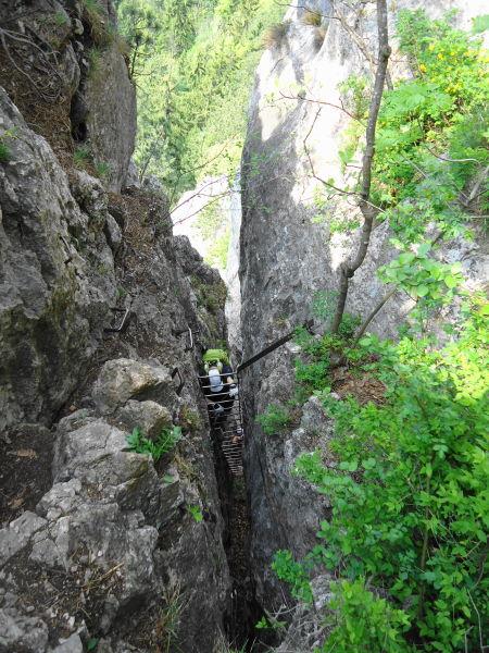 Foto: Günter Siegl / Klettersteig Tour / Hanselsteig und Leiterlsteig (870m) / Schiefe Leiter / 03.05.2014 20:53:59