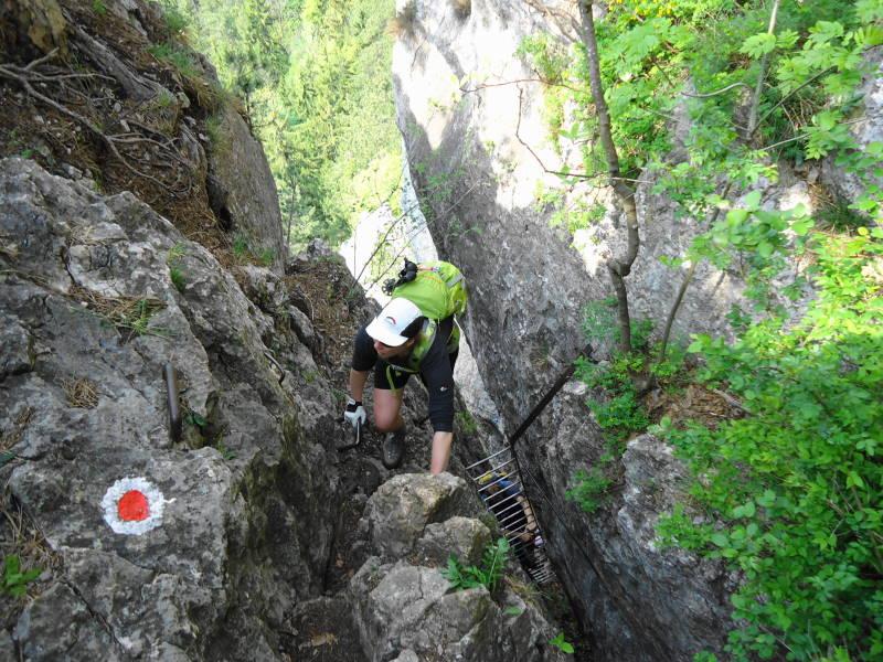 Hohe Wand Klettersteig : Gebirgsvereinssteig auf die hohe wand bergwelten