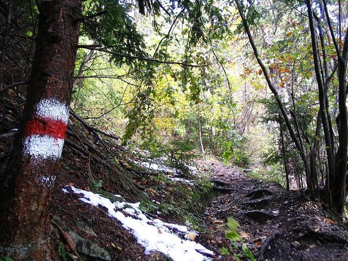 Foto: Andreas Koller / Klettersteig Tour / Hanselsteig und Leiterlsteig (870m) / 19.10.2009 19:37:09
