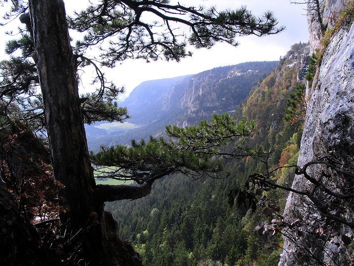 Foto: Andreas Koller / Klettersteig Tour / Hanselsteig und Leiterlsteig (870m) / 19.10.2009 19:32:47