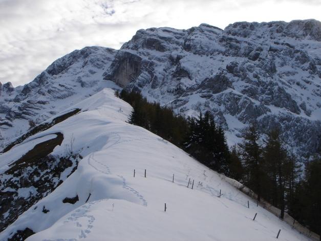 Foto: Manfred Karl / Ski Tour / Eckerleiten - Purtschellerhaus / Eckerfirst - noch unverspurt / 25.10.2009 16:40:33
