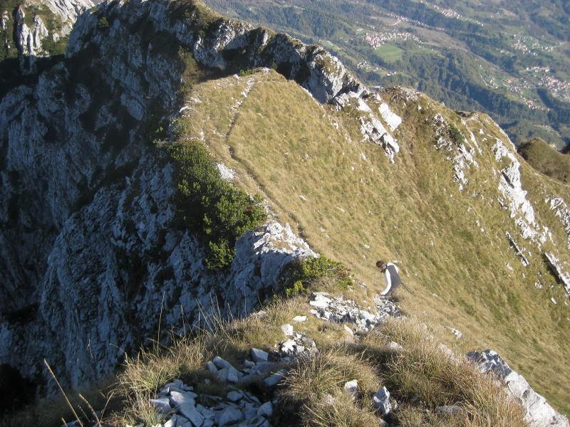 Foto: Wolfgang Lauschensky / Wander Tour / Monte Dolada 1938m / schmale Pfade in steilen Gras- und Schrofenflanken / 30.10.2009 15:23:51