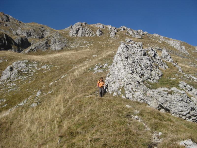 Foto: Wolfgang Lauschensky / Wander Tour / Monte Pelf 2502m / manchmal erodierter schmaler Grasmattensteig / 31.10.2009 14:15:22