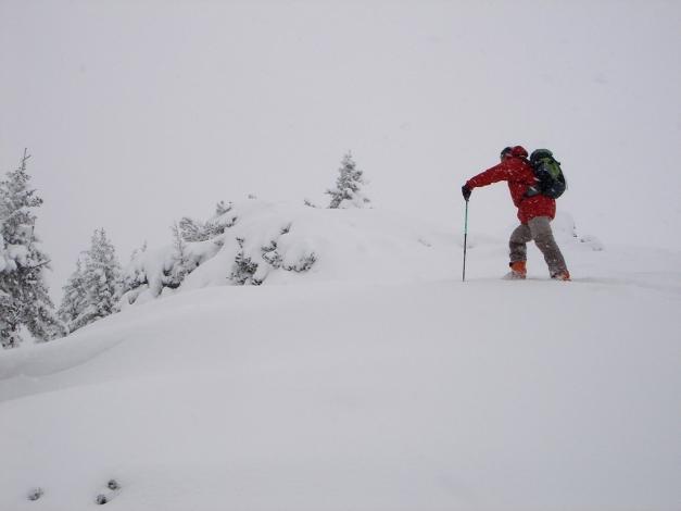 Foto: Manfred Karl / Ski Tour / Von Zauchensee auf den Roßkopf / Gratrücken zum Roßkopf / 03.11.2009 20:03:56