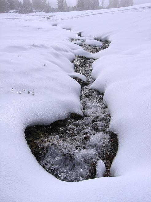 Foto: Andreas Koller / Ski Tour / Durchs Plattenkar auf die Plattenspitze (2294 m) / 08.11.2009 20:13:22