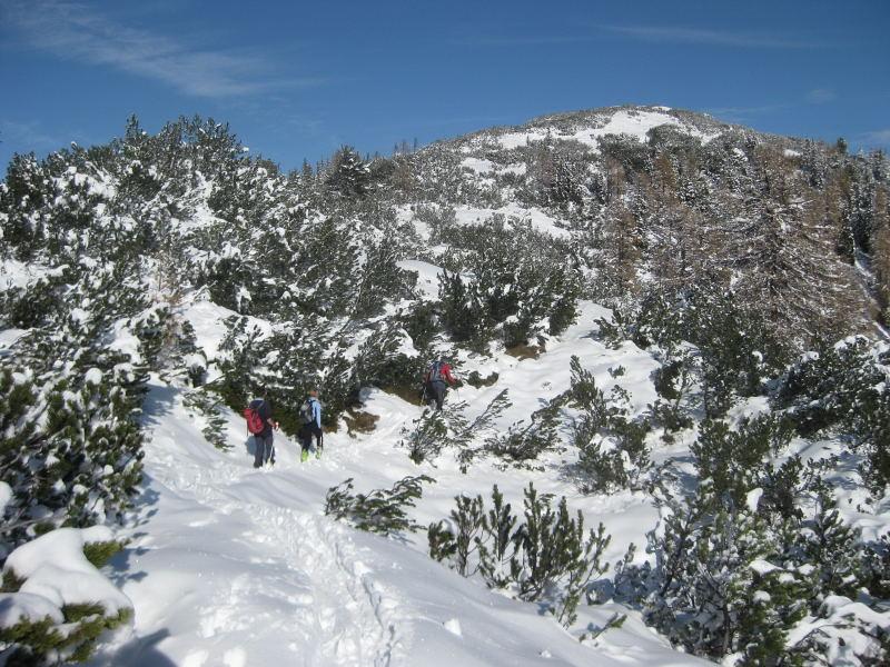 Foto: Wolfgang Lauschensky / Ski Tour / Hakopf über Schlaningsattel / unübersichtliches aber einfaches Skiwandergelände entlang des Sommerweges / 08.11.2009 20:52:26