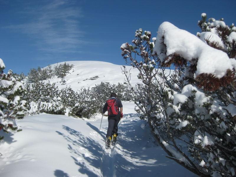 Foto: Wolfgang Lauschensky / Ski Tour / Hakopf über Schlaningsattel / die Firnkuppe Hakopf / 08.11.2009 20:52:10