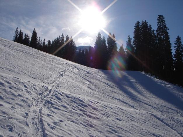 Foto: Manfred Karl / Ski Tour / Stubnerkogel / Im mittleren Teil des Anstieges auf den Stubnerkogel / 09.11.2009 20:42:30