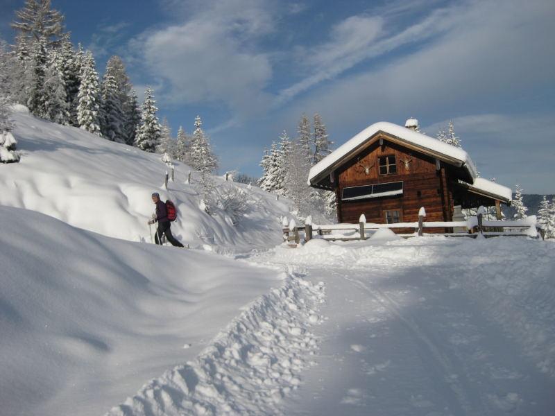 Foto: Wolfgang Lauschensky / Ski Tour / Vorderes Labeneck  / bei der Walchhofalm verläßt man den Güterweg / 10.11.2009 01:39:18