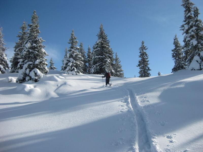 Foto: Wolfgang Lauschensky / Ski Tour / Vorderes Labeneck  / traumhaftes Skiwandergelände nahe des Gipfels / 10.11.2009 01:38:21