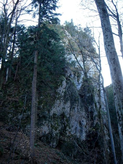 Foto: Manfred Karl / Kletter Tour / Engelstein / Links der senkrechten Nordwand verläuft der Normalanstieg (durch Bäume verdeckt). / 15.11.2009 19:44:11