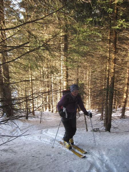 Foto: Wolfgang Lauschensky / Ski Tour / Feichteck (1514m) / am linken Rand der steilen Waldschneise / 22.11.2009 12:17:46