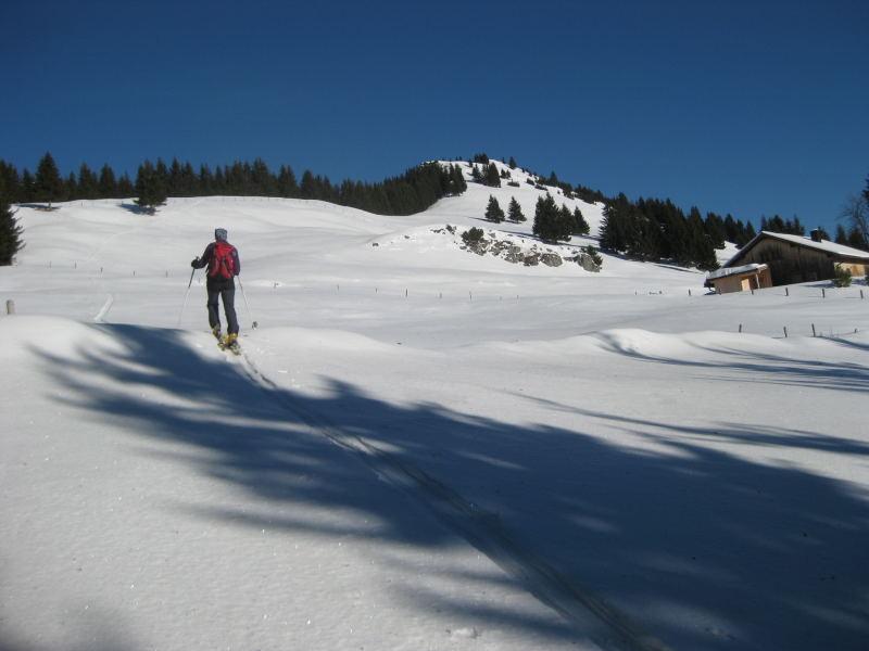 Foto: Wolfgang Lauschensky / Ski Tour / Feichteck (1514m) / Feichteckalm am freien Südostrücken / 22.11.2009 12:17:14